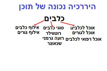 מבנה נכון של תוכן האתר